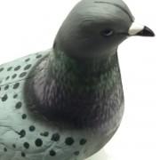 Señuelo de paloma zurita